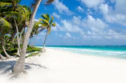 Auf nach Mexiko! 10 Tage Playa del Carmen im TOP 4* Hotel mit All Inclusive, Flug, Transfer ...