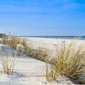Relaxen an der Ostsee: 3 Tage im TOP 4* Hotel mit Frühstück, Wellness & Massage nur 89€