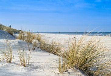Wellness an der polnischen Ostsee: 6 Tage im 3* Hotel mit Halbpension nur 99€