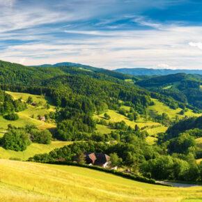 Schwarzwald Kurztrip: 3 Tage im TOP Hotel mit Halbpension & Wellness ab 189€