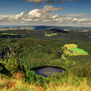Schwarzwald: 3 Tage Erholung im 4* Naturhotel mit Frühstück, 3-Gänge-Dinner & Extras für 129€