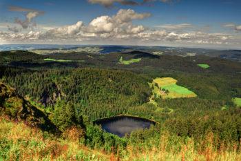 Wellness im Schwarzwald: 3 Tage Bad Herrenalb mit 4* Hotel, Halbpension & Sauna ab 139€