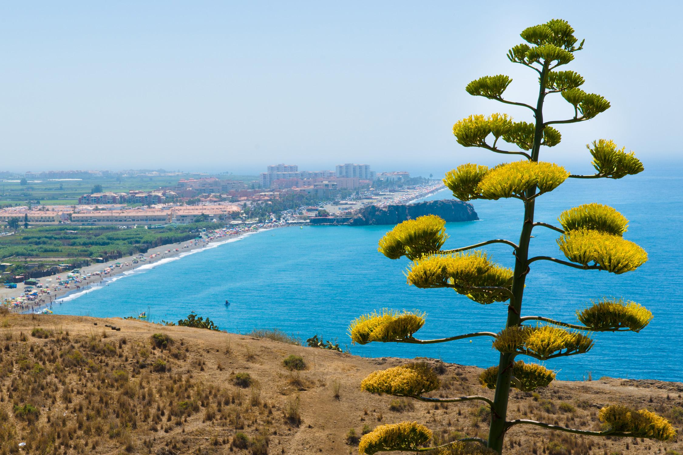 Flug Und Hotel In Almeria