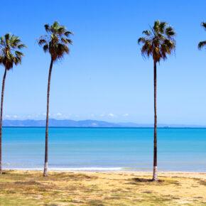 Frühbucher Tunesien: 8 Tage im 4* Hotel mit All Inclusive, Flug, Transfer & Zug für 199€