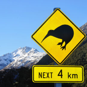 Eintrittsgebühr für Neuseeland: Ab Oktober werden Touristen zur Kasse gebeten