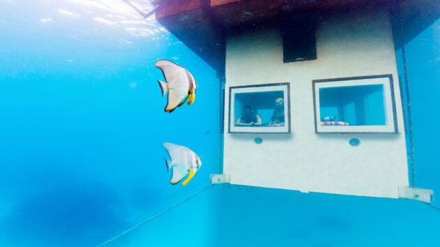 manta-resort-unteManta Resort unter Wasserr-wasser