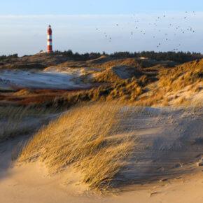 Wochenendtrip an die Nordsee: 3 Tage im tollen 4* Hotel in Wilhelmshaven für 49€