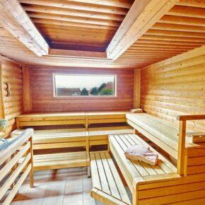 Trihotel am Schweiter Wald Sauna