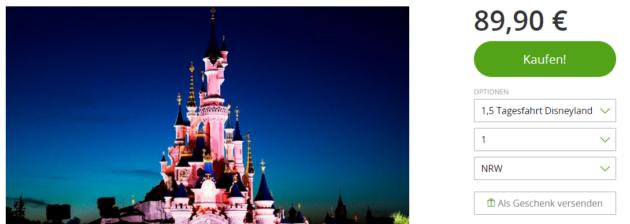Disneyland Tagesausflug