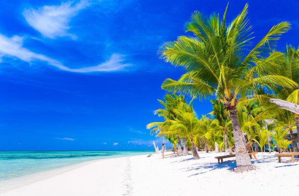 Philippinen Strand Palmen