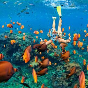 Karibik Tipps: Die schönsten Inseln der Karibik im Überblick