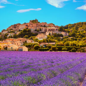 Traum in Lila: 8 Tage Provence zur Lavendelblüte mit Unterkunft nur 60€