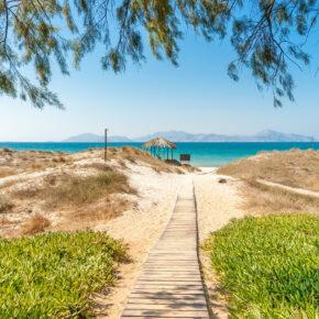 Kos im Sommer: 8 Tage im guten Hotel mit Flug, Transfer & Zug nur 239€
