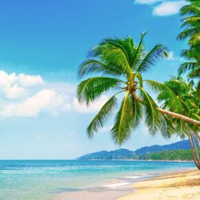 Ab ins Paradies: 6 Tage Malediven im TOP 4* Hotel mit Wasser-Bungalow, Vollpension, Flug & Transfer für 1.821€