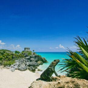 Viva la Mexiko: 8 Tage im guten 5* Boutique Hotel in Tulum mit Flug nur 476€