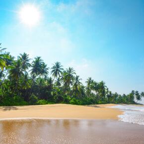 Abenteuer Sri Lanka: 12 Tage mit Unterkunft und Flug nur 440€