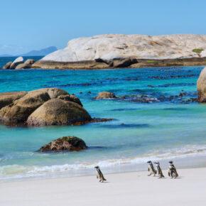 Südafrika Rundreise: 14 Tage mit dem Camper durch Südafrika mit Transfer & Flug nur 1.079€