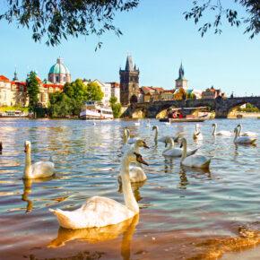 Wochenende in Prag: 2 Tage in Unterkunft mit Sauna nur 5€