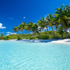 Karibik Palmen Tropenstrand