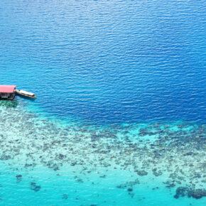Borneo: 10 Tage in Malaysia mit TOP Unterkunft mit Frühstück & Flug nur 398€