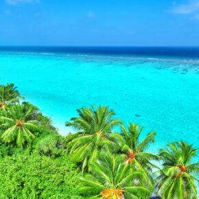 Malediven Megadeal: 18 Tage auf den Malediven im guten Strandhotel mit Flug & Frühstück nur 667 €
