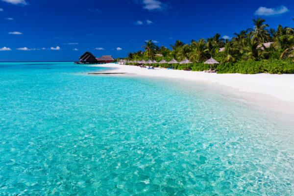 Mauritius Palmen Lagune
