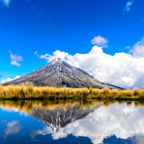 Neuseeland Mount Taranaki Egmont Nationalpark