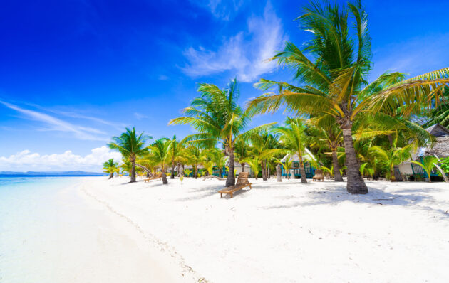 Philippinen Tropischer Strand Palmen