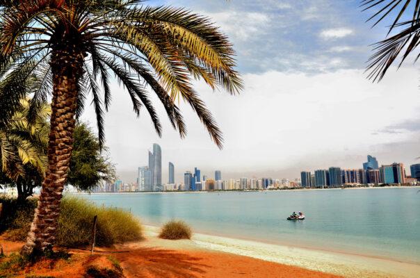 VAE Abu Dhabi Strand Palme