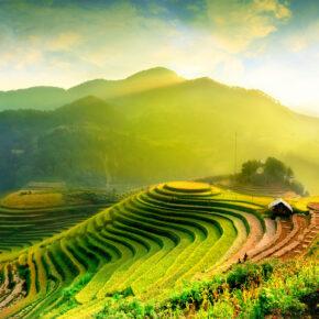 Auf Händen getragen: Die Goldene Brücke in Vietnam