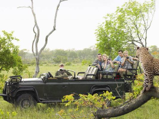 Afrika Safari Kruger Nationalpark