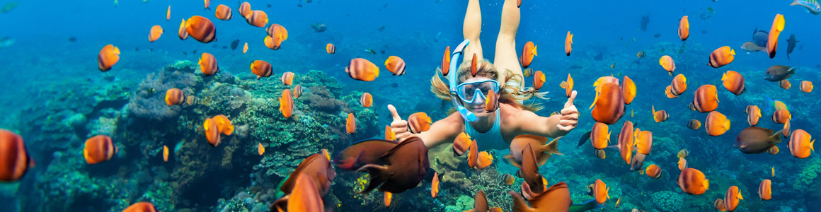 Bahamas Schnorcheln Reisekalender