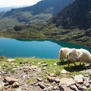 Fly & Drive am Sommer-Wochenende: Wales mit Flug & Mietwagen nur 70€