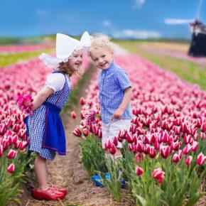 Die schönsten Blütenfeste in Deutschland & der Welt