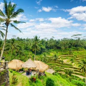 Frühbucher Bali: 13 Tage Inselurlaub mit Hotel in Strandnähe & Flug nur 487€