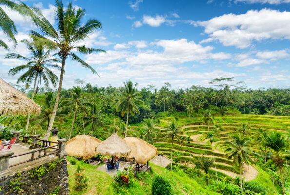 Indonesien Bali Reisterrasse Hütten