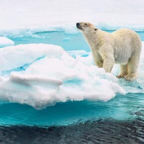 Naturwunder in Spitzbergen erleben: Flüge nach Longyearbyen hin & zurück nur 206€