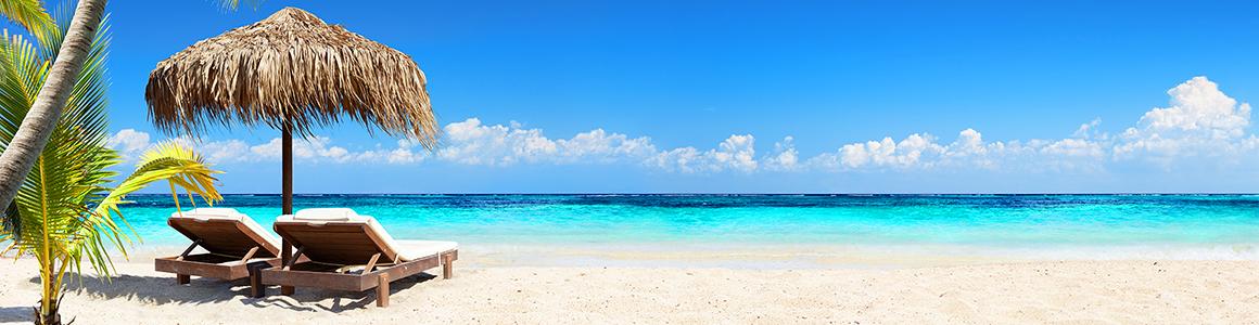 Strand Palmen Sonnenliegen Panorama