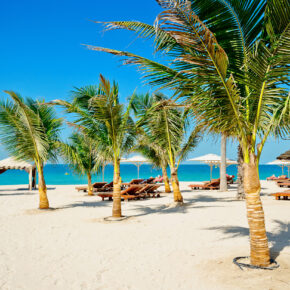 Dubai Luxus: 5 Tage im TOP 5* Mövenpick Hotel mit Halbpension, Flug, Transfer & Zug nur 599€