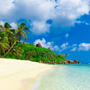 Belize Jungle Strand