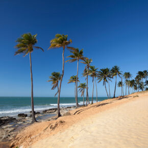 Brasilien: 9 Tage Fortaleza im 3* Hotel mit Flug & Transfer nur 449€