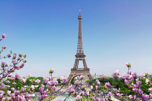 Frankreich Paris Eiffelturm Frühlingsblüte