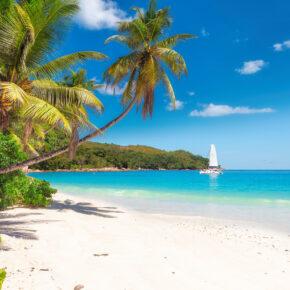 2021 nach Jamaika: 14 Tage mit 3* Unterkunft am Strand & Direktflug nur 687€