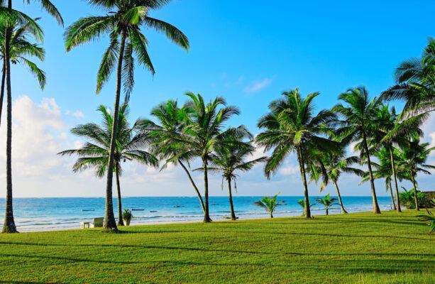 Kenia Diani Küste