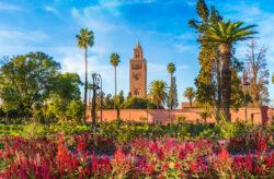 Kracher: 4 Tage Marrakesch mit TOP Hotel in der Medina, Frühstück & Flug nur 53€