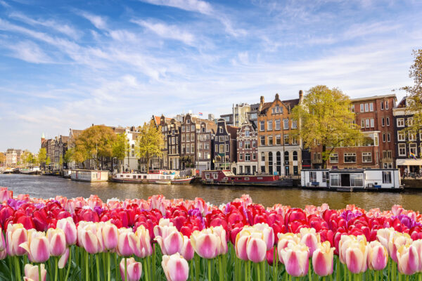 Niederlande Amsterdam Kanal Tulpen