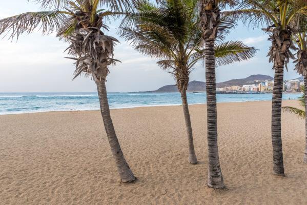 Spanien Gran Canaria Playa de las Canteras