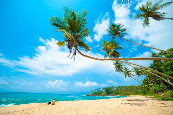 Sri Lanka Beste Reisezeit