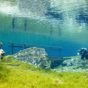 Österreich Steiermark Grüner See Taucher