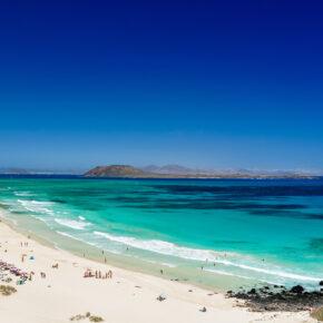Lastminute Family Deal: 7 Tage Fuerteventura im 3.5* Hotel mit All Inclusive, Flug, Transfer & Zug nur 341€